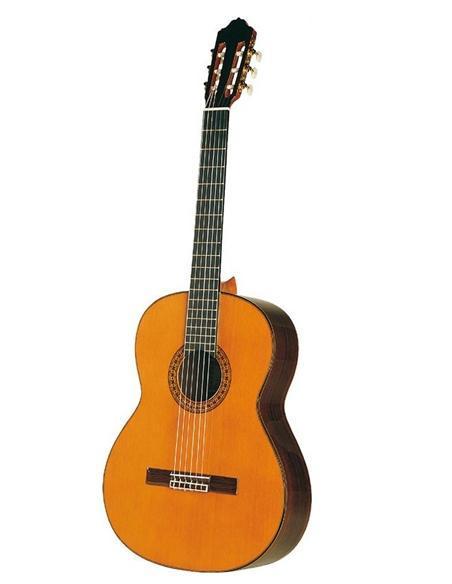 Guitares de concert