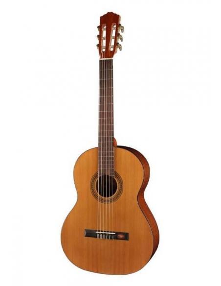 Guitares d'études
